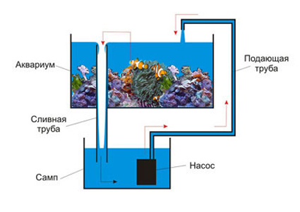 Устройство аквариума своими руками